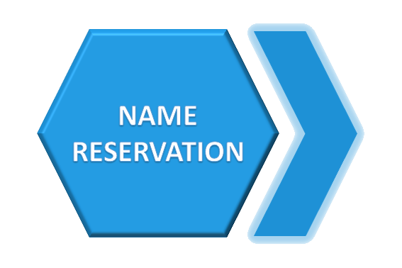 Company Name Reservation